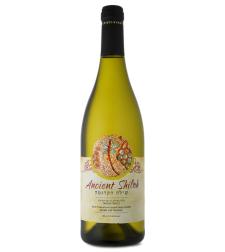 יין שילה הקדומה