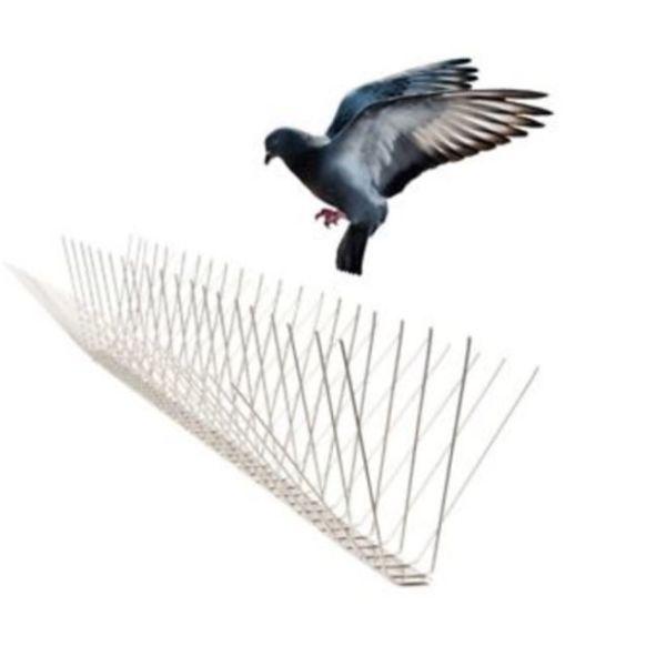 הרחקת יונים וציפורים