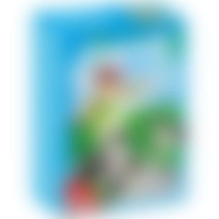 פליימוביל 5213 - בורדר קורי וגור