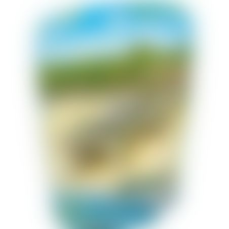 פליימוביל 6644 - תנינה וגורי תנין