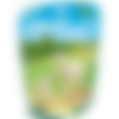 פליימוביל 6647 - אלפקה וגור
