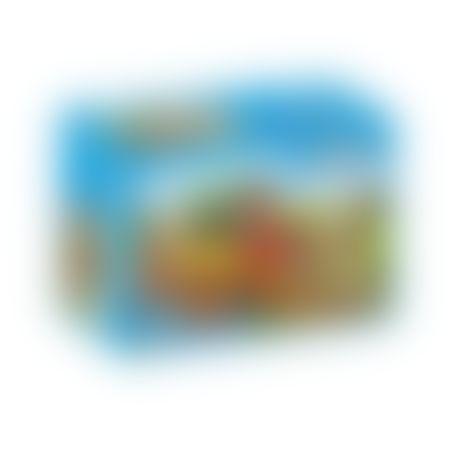 פליימוביל 6948 - פיקניק בכרכרה