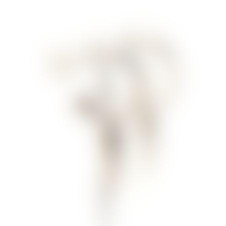 עגילי ג'יפסי קונוסים - כסף