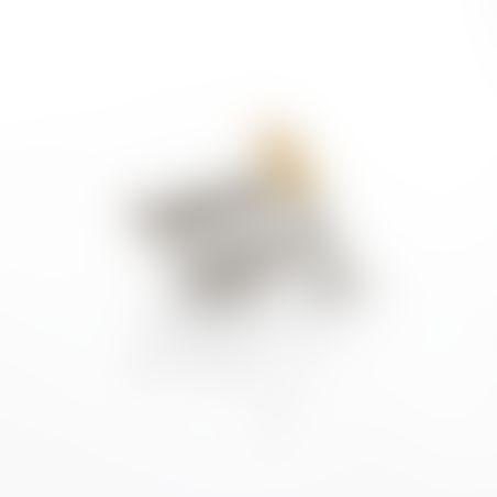 טבעת נשר - ניקל זהב