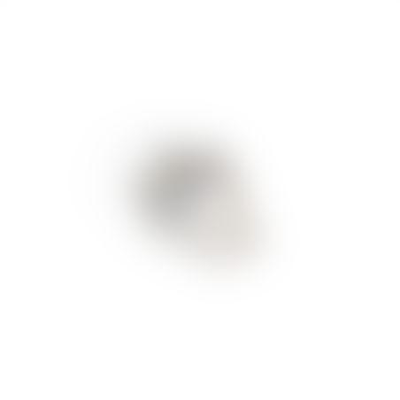 טבעת נשר - ניקל