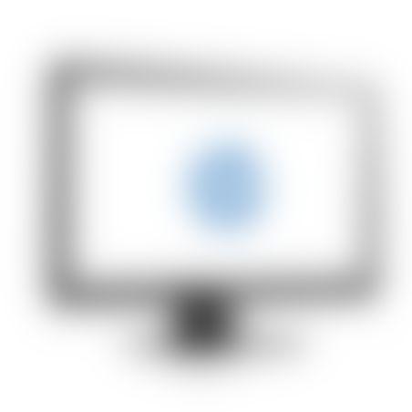 מסך HP Monitor 19