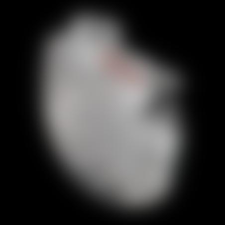 מגן דיסק קדמי KTM/Husqvarna