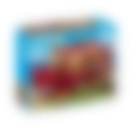 פליימוביל 9373 - תיבת נח