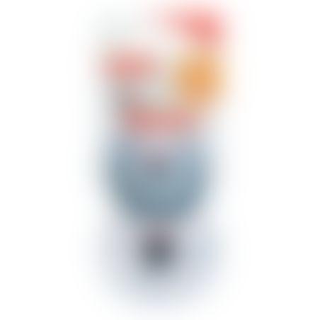 NUK זוג מוצצים מיקי מאוס 0-6 ח' אפור