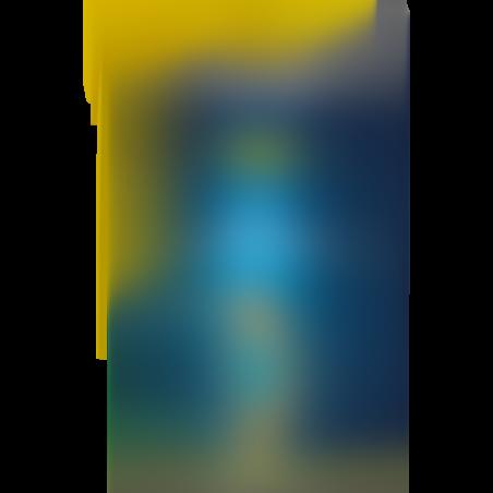 תרסיס לשימון שרשרת לאופנועי שטח DX11