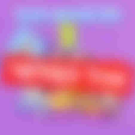 סוויטבוקס חורף 2 (L)