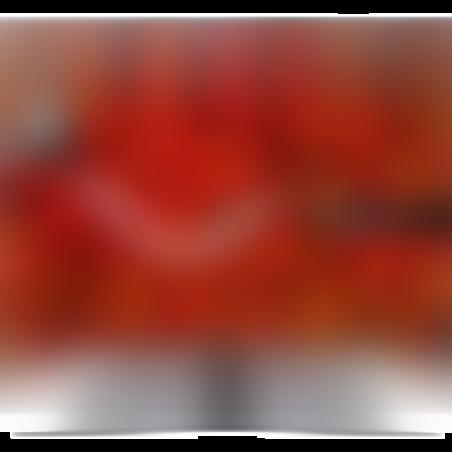 טלוויזיה LG 65 SMART 4K דגם  65UP8150PVB אחריות יבואן רשמי