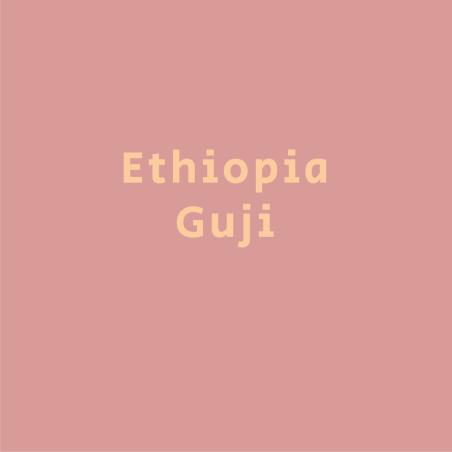 אתיופיה גוג'י