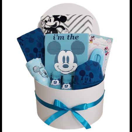 מתנה מושלמת להולדת הבן - מיקי תכלת