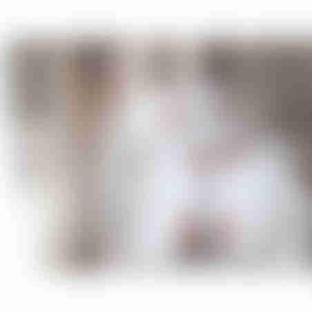 סט מצעי פרקל למיטת יחיד ניו קלאסיק AM-1087