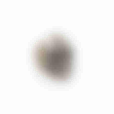 טבעת גולגולת - כסף 925