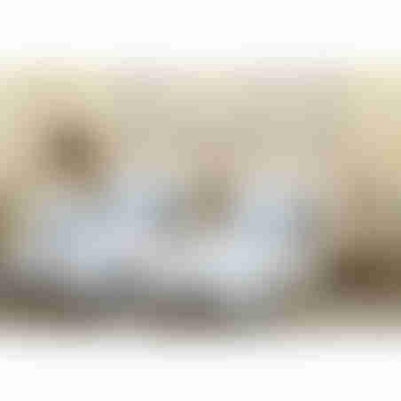 סט מצעים למיטה יהודית אמיטקס - 207