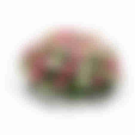 סידור פרחים מיוחד בסל עם ורדים וליזיאנטוס