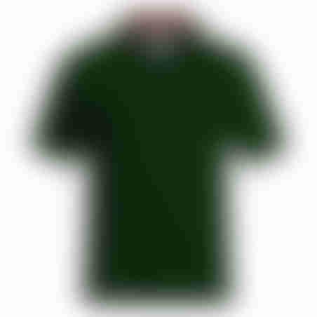 פולו קצר פיקה פס בצווארון ריב- ירוק
