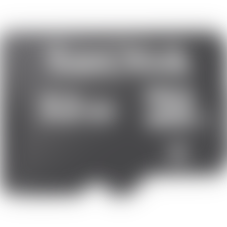 כרטיס זיכרון Sandisk 32GB