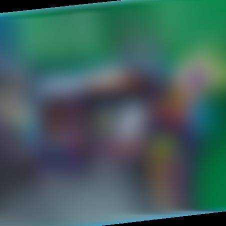 פליימוביל 5638 - אריזת נשיאה בית רוחות רפאים