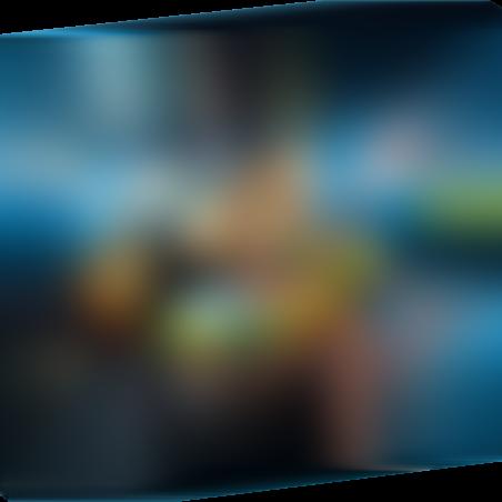 פליימוביל 9000 - הקמיליון הפיראטית