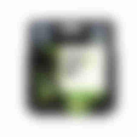 ראש דיו מקורי HP 123XL שחור