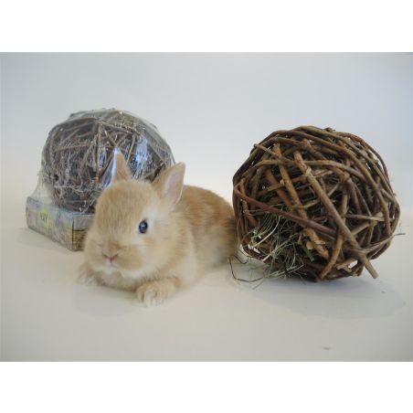 כדור עץ במילוי אספסת לארנב