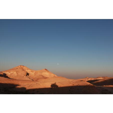 השתלמות מס' 907 - 29/09/2021 - המדבר הנסתר של פתחת ניצנה - ד