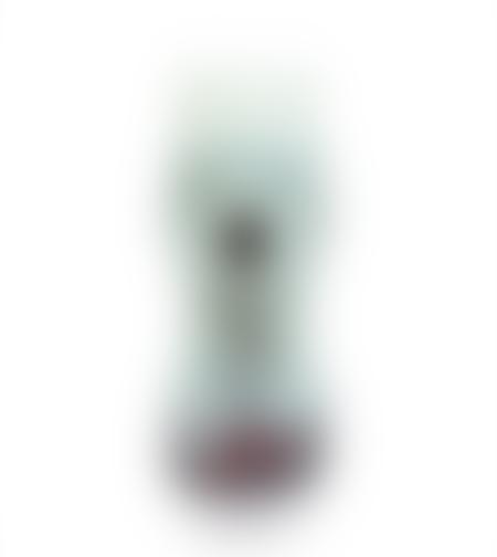 סילאן טבעי אורגני בבקבוק לחיץ - קינג סלומון 350 גרם