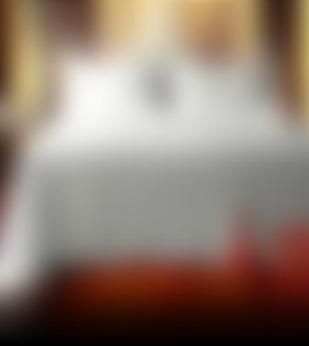 כיסוי מיטה זוגי לבן עם זוג ציפיות מעוטרות