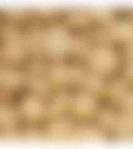 שוקולד בלונדי גולד 250-גרן