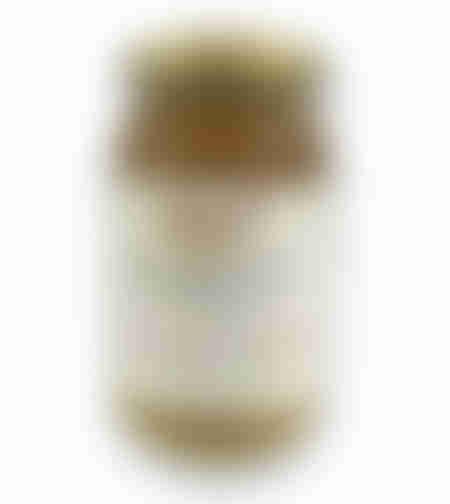 דבש אורגני