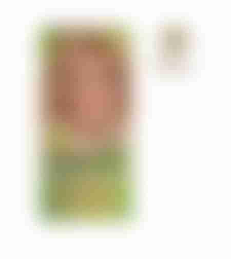 צבע קבוע לשיער בלונד דבש 9N Naturtint