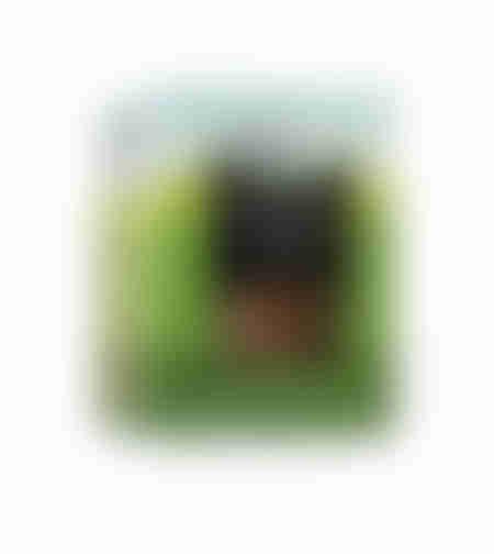 קרקר שיפון אורגני במשקל 200 גרם - אביב