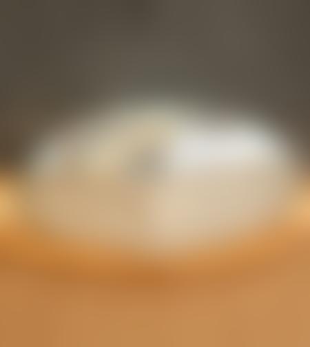 גבינת גאודה עיזים כמהין לנדנה