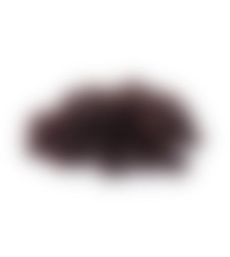 צימוקים שחורים - 250 גרם