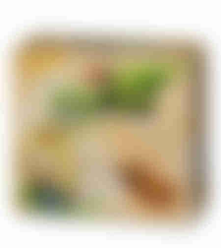 סודות המזרח - תי לקס חליטת צמחים ופירות ללא קפאין ליציאה קלה בטעם קינמון
