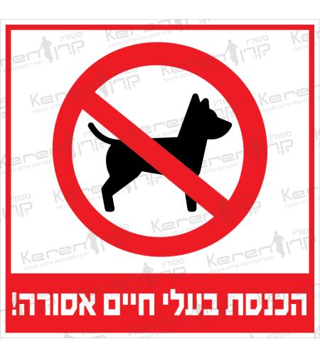 הכנסת בעלי חיים אסורה