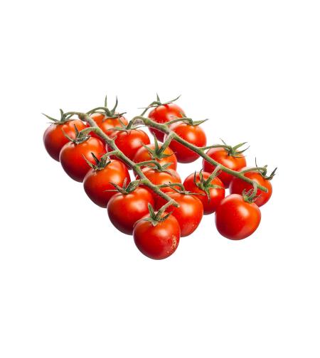 עגבניה שרי אשכולות (ק