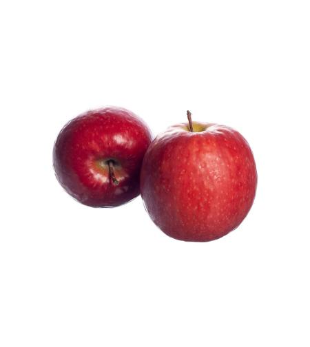 תפוח עץ פינק ליידי (ק