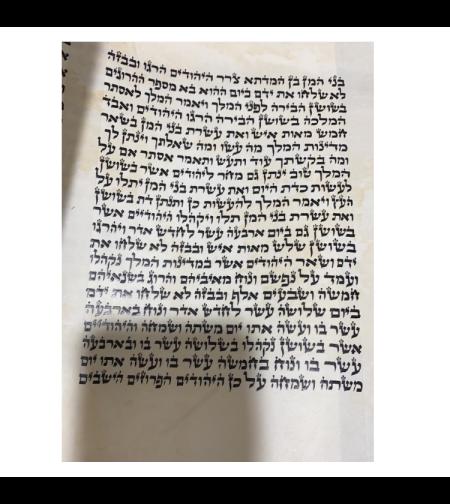 מגילת אסתר 'המלך' 21 שורות 28 ס'מ דגם עטרת