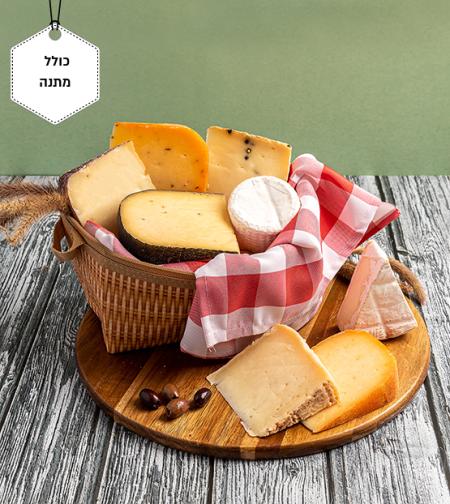 ערכת פיקניק של גבינות משובחות