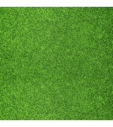 טפט מדבקה 35*35  דגם דשא