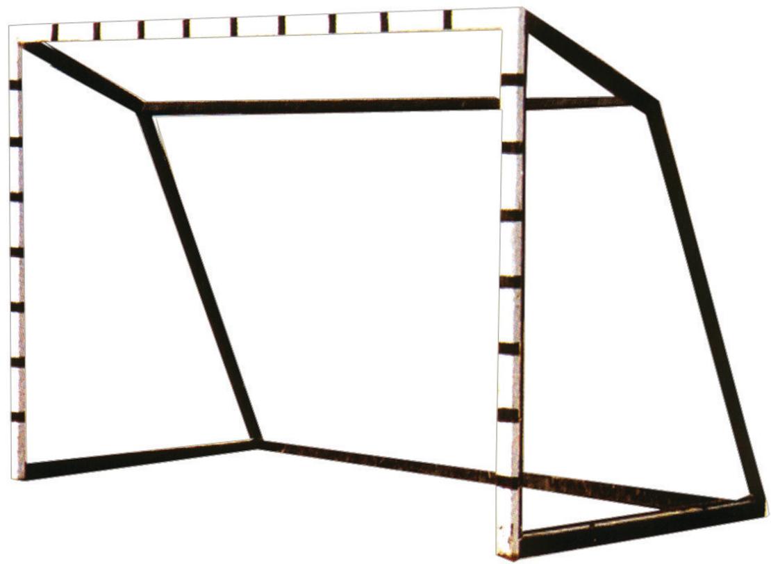 שער קט-רגל נייד 2X3 מ' יחידה בלבד