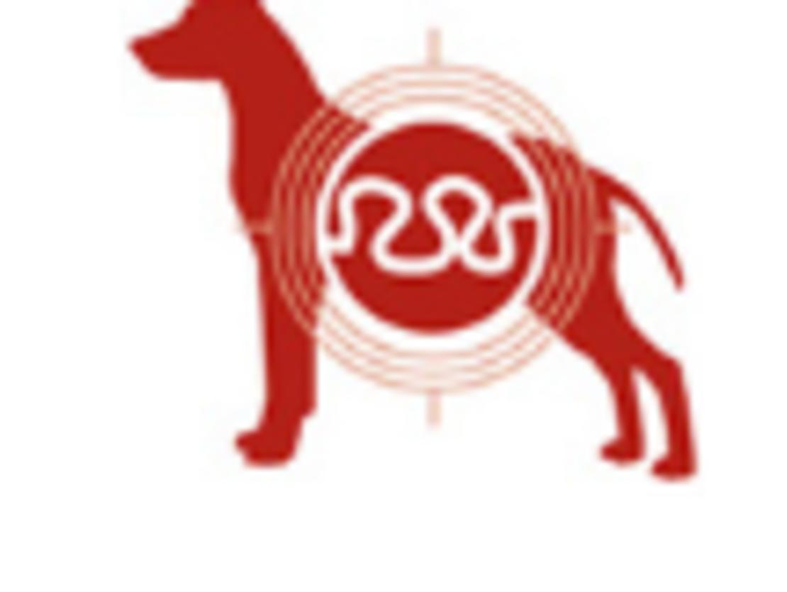 מזון לכלבים מבוגרים בגדלים קטנים במשקל 7.5 ק