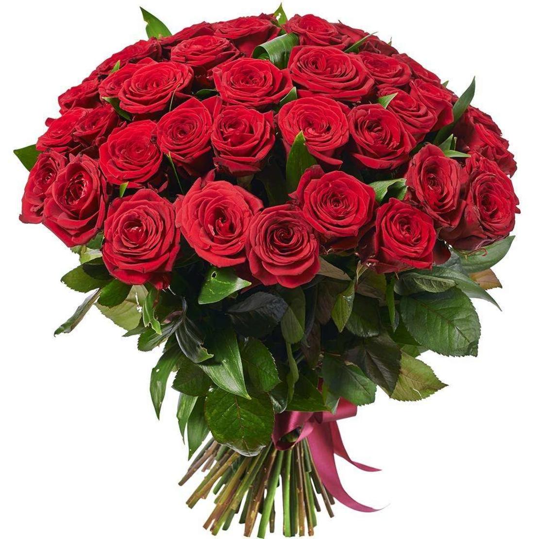 זר 55 ורדים אדומים #10