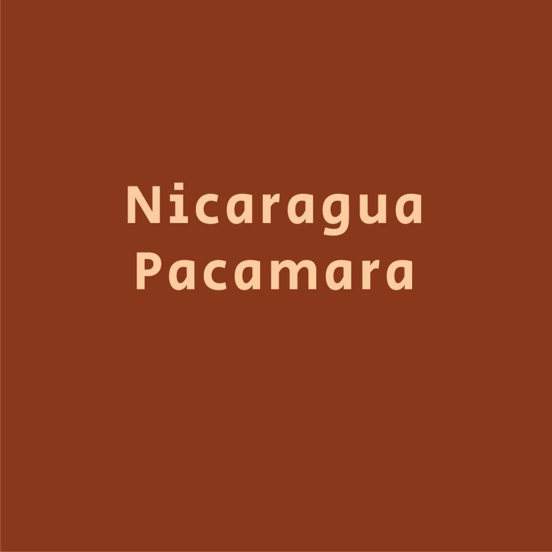 ניקרגואה פקמארה