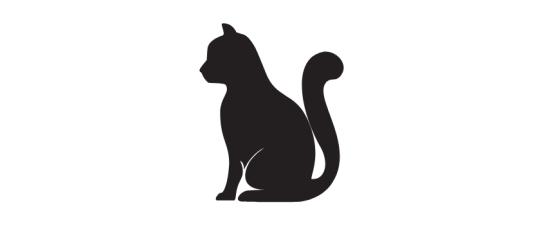 מזון וציוד לחתולים